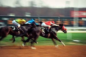 Thoroughbred Radio Ad Campaign Races into Hall of Fame
